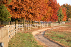Governor Trail